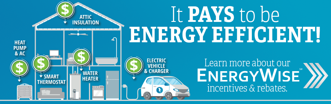 EnergyWise Incentives