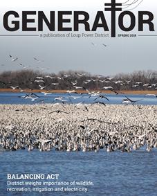 Spring 2018 Generator Cover